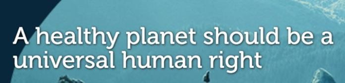 100 anuncios publicitarios con eslogan: Mejores slogans. BirdLife: Un planeta sano debería ser un Derecho Humano Universal.
