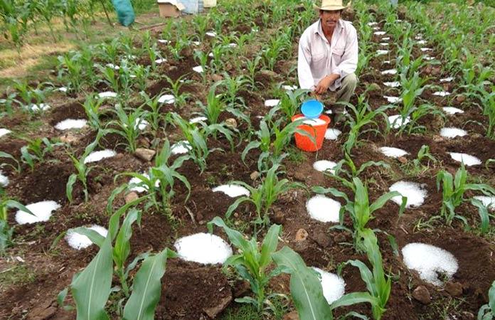 Invenciones mexicanas: Silos de agua
