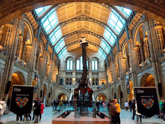 Museo de Historia Natural, Londres, Inglaterra.
