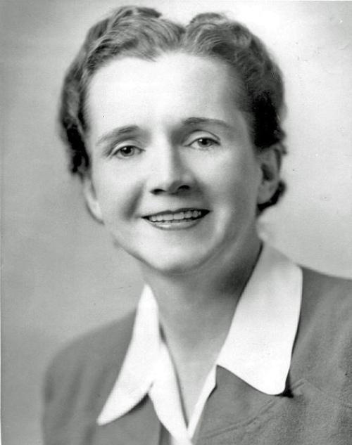 Movimientos sociales que cambiaron el rumbo de la historia – Rachel Carson.