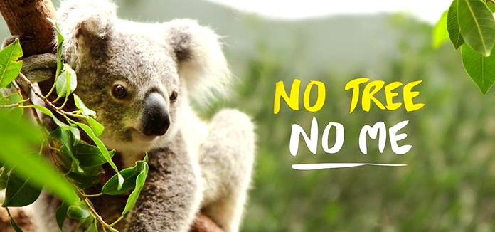 Campaña de la Australian Koala Foundation