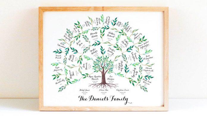 Árbol genealógico: qué es, cuál es su utilidad y diferentes tipos que existen