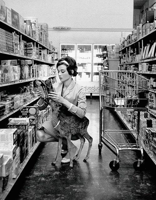 """Audrey Hepburn de compras con su ciervo """"Ip"""""""
