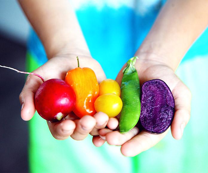 No todo lo biológico es orgánico ni todo lo orgánico es ecológico: estas son las diferencias