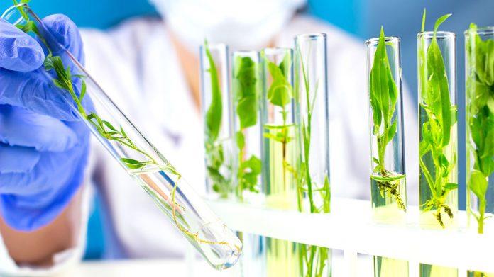 Biotecnología médica: significado, ejemplos, aplicaciones actuales, avances y la medicina del futuro