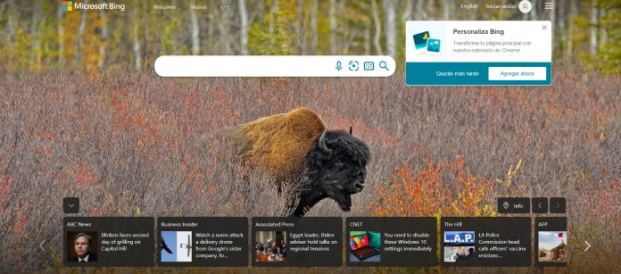 Buscadores-De-Internet-Bing