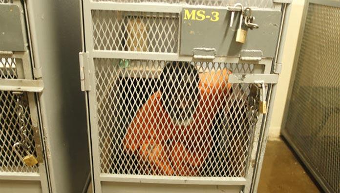 Las cárceles más aterradoras - ADX Florence