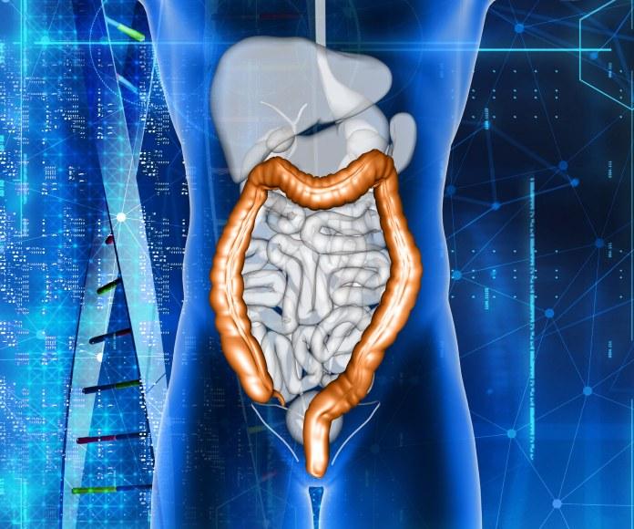 Conoce por qué el equilibro de la microbiota intestinal no debería ser alterado