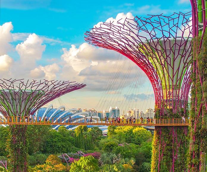 Ecología urbana. Ecosistemas urbanos sostenibles