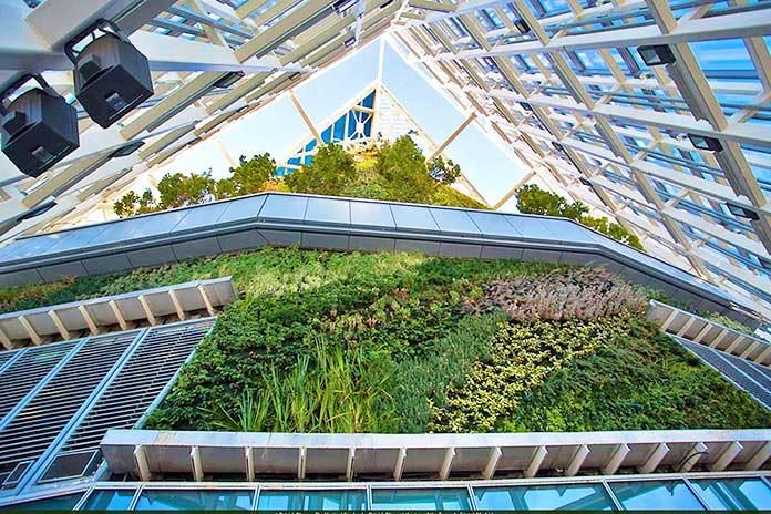 Edificios verdes - Torre de Cristal