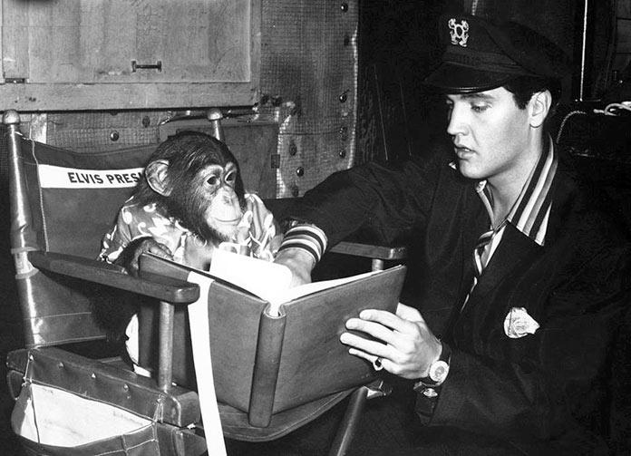 Elvis Presley con Scatter