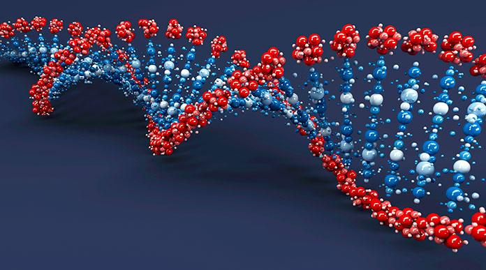 Epigenética: apagando y encendiendo genes