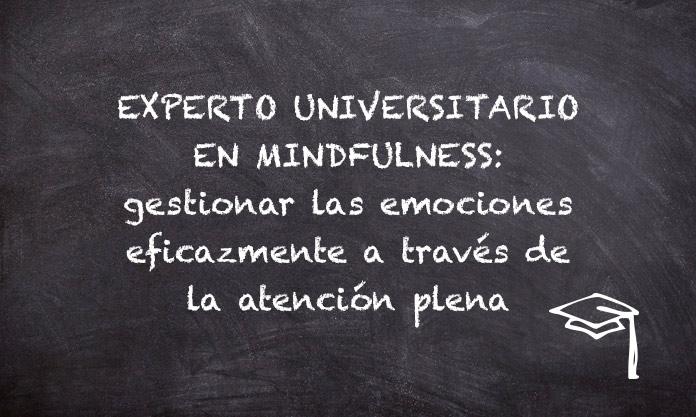 Experto Universitario en Mindfulness: gestionar las emociones eficazmente a través de la atención plena