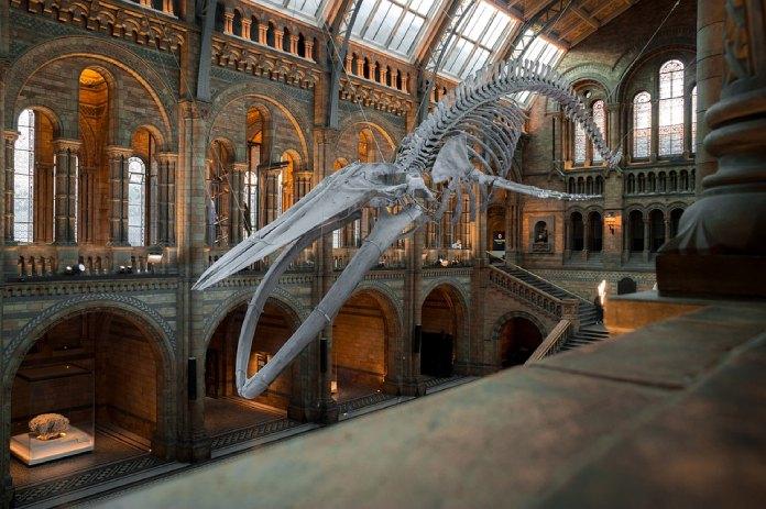 Exposiciones-Virtuales-De-Arte+Museo-Londres