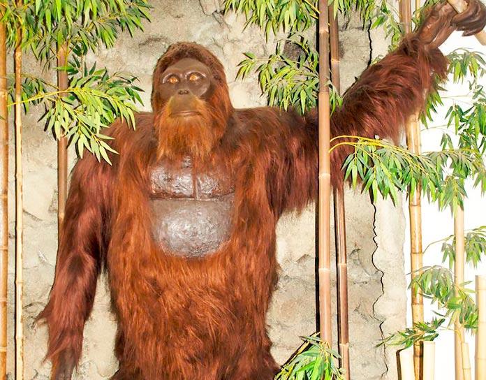 Estatua de un Gigantopithecus