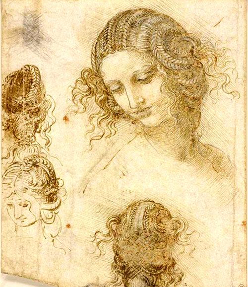 Dibujos desde distintas perspectivas de la cabeza de Leda