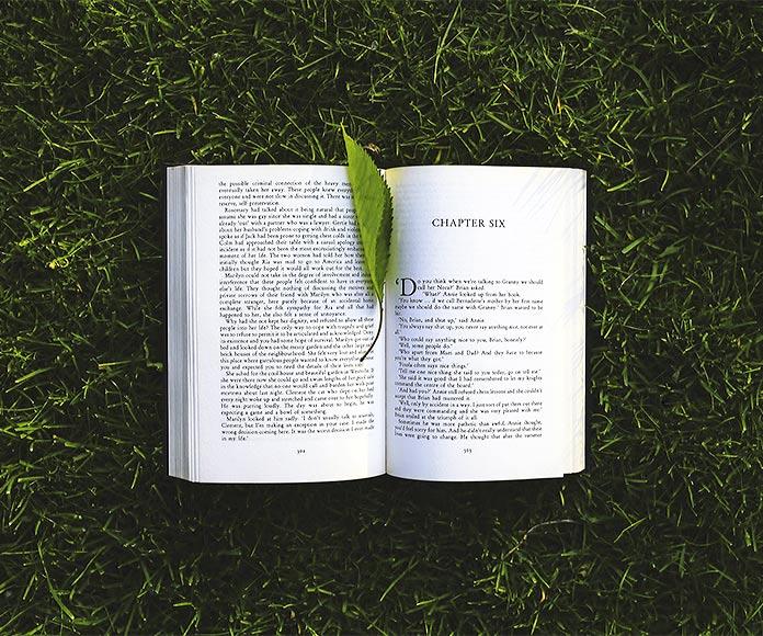 Libros sobre la vida que sacudirán tu mundo: los 25 mejores libros para pensar y reflexionar