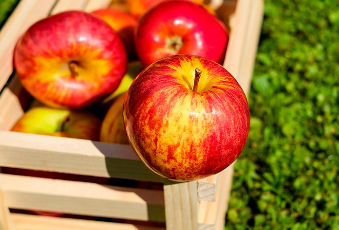 Incienso de manzana