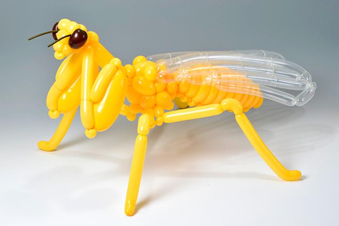 Mantis (Masayoshi Matsumoto)