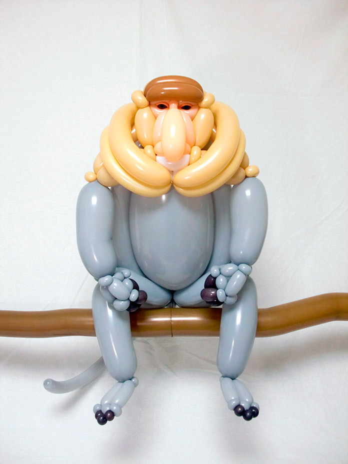 Mono narigudo (Masayoshi Matsumoto)