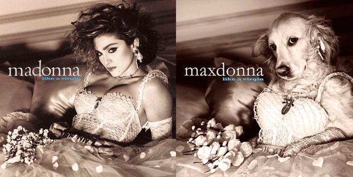 Maxdonna - Like a virgin