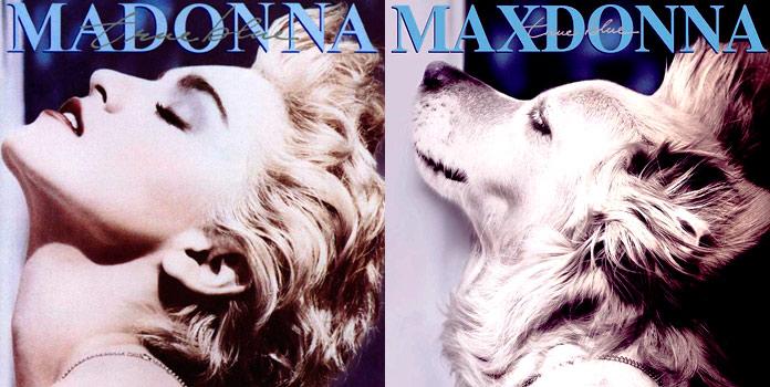Maxdonna - True blue
