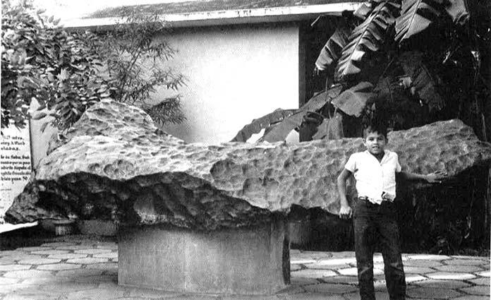 Meteoritos caídos en la Tierra: Meteorito de Bacubirito