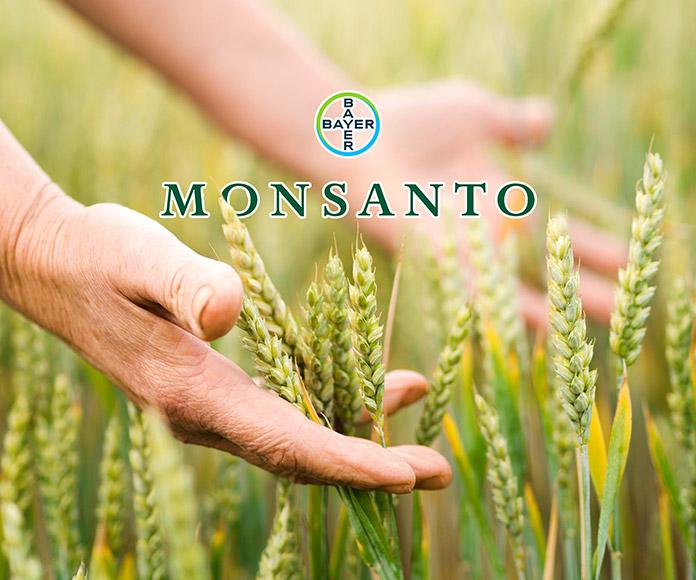 Monsanto: la historia continuada sobre el ecocidio del planeta y el atentado contra la biodiversidad