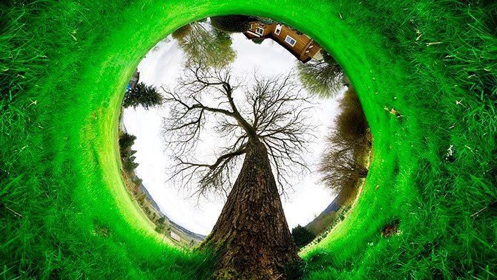 Las increíbles fotografías ganadoras del concurso de The Nature Conservancy.
