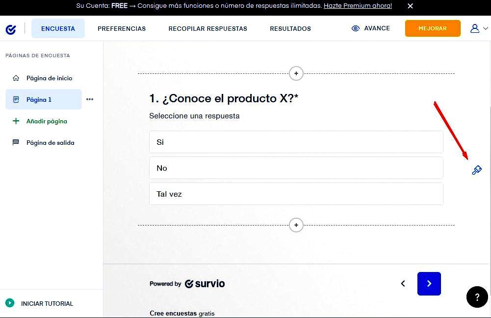 Páginas para hacer encuestas - Personalización de encuesta Survio