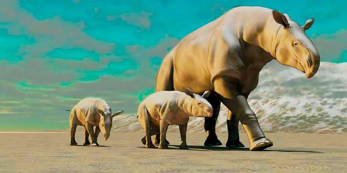 Un Paraceratherium con sus crías