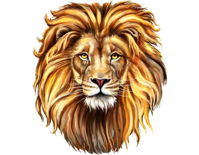 Rastafari - León de Zion