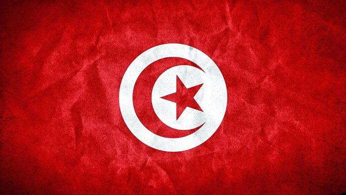 La Revolución del Jazmín: Revolución en Túnez, causas y consecuencias