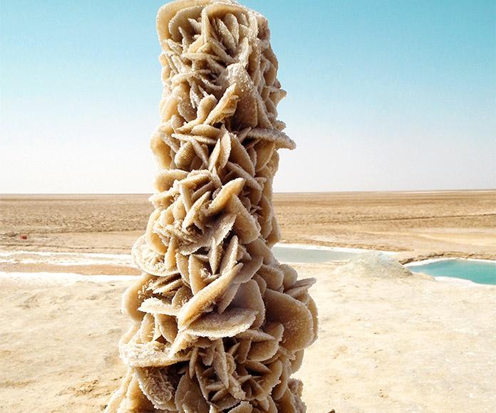 Rosa del desierto, piedra misteriosa con características, propiedades y usos misteriosos