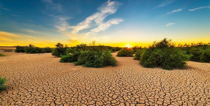 Se esperan fuertes sequías en España a partir del año 2050.