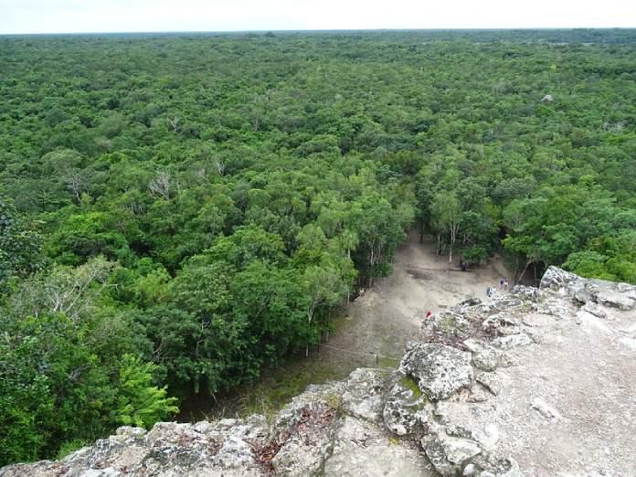 Templos mayas. Cobá. Entorno selvático de Cobá.