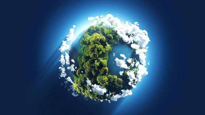¿Es posible la vida en la Tierra sin árboles?