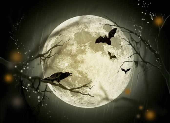 Tipos-de-brujas+bruja-augur