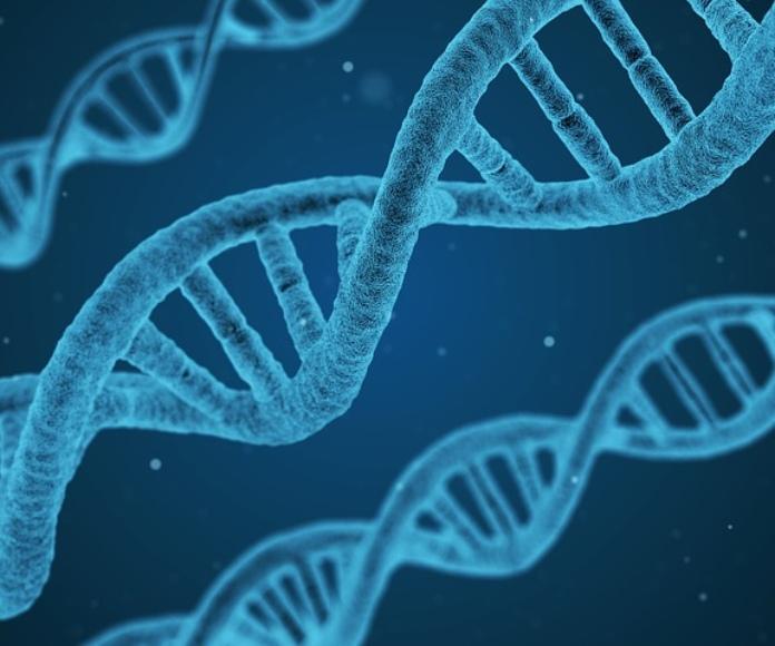 Una nueva clase de drogas corrige defectos genéticos