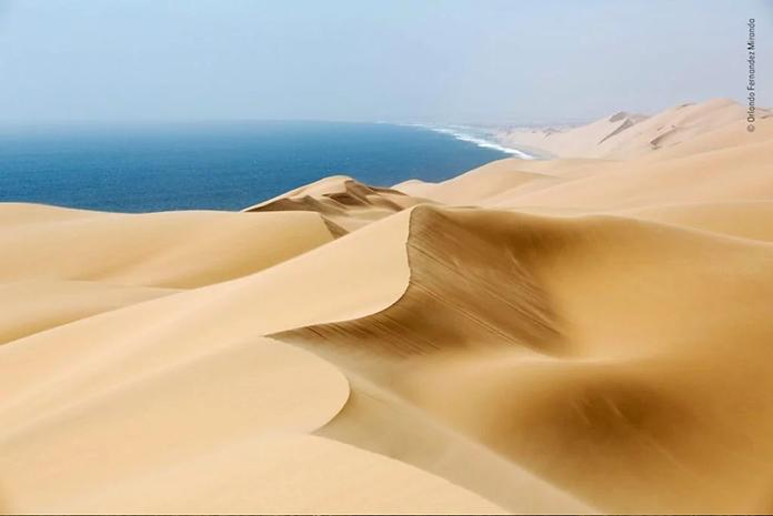Médanos en el desierto