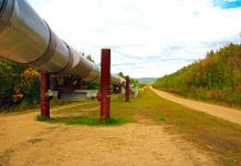Oleoducto Trans-Alaska