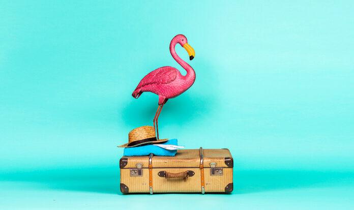 5 cosas que debes saber antes de viajar