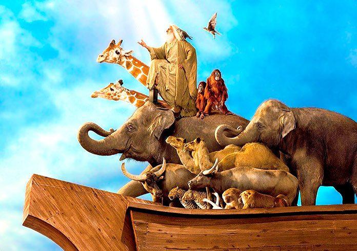 La versión moderna del Arca de Noé busca casa en Israel