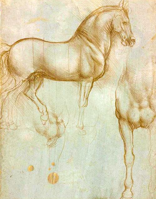 Bocetos de caballos