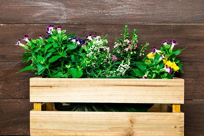 caja de madera jardinera