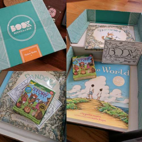 cajas-de-suscripcion-libros