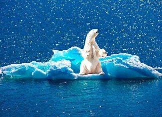 En el año 2035 el cambio climático llegará a un punto de no retorno