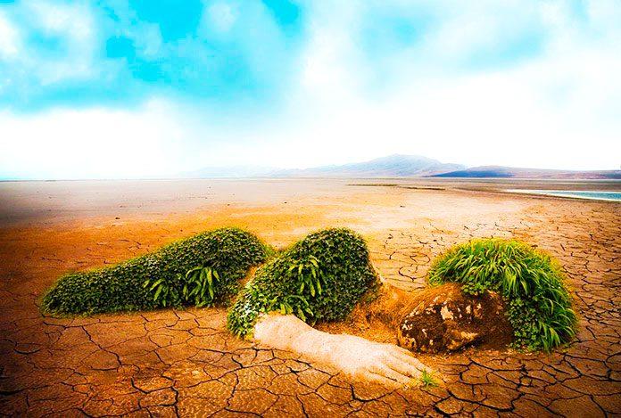 Los asesores científicos de la ONU advierten de que hay que tomar medidas inmediatas contra el cambio climático