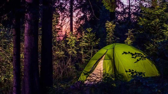 caseta de campaña en el bosque de noche