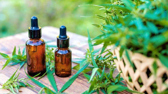 Los cannabinoides y sus beneficios para la salud